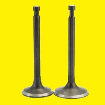 Internal Combustion Engine  Valves (Exhaust and Inlet)