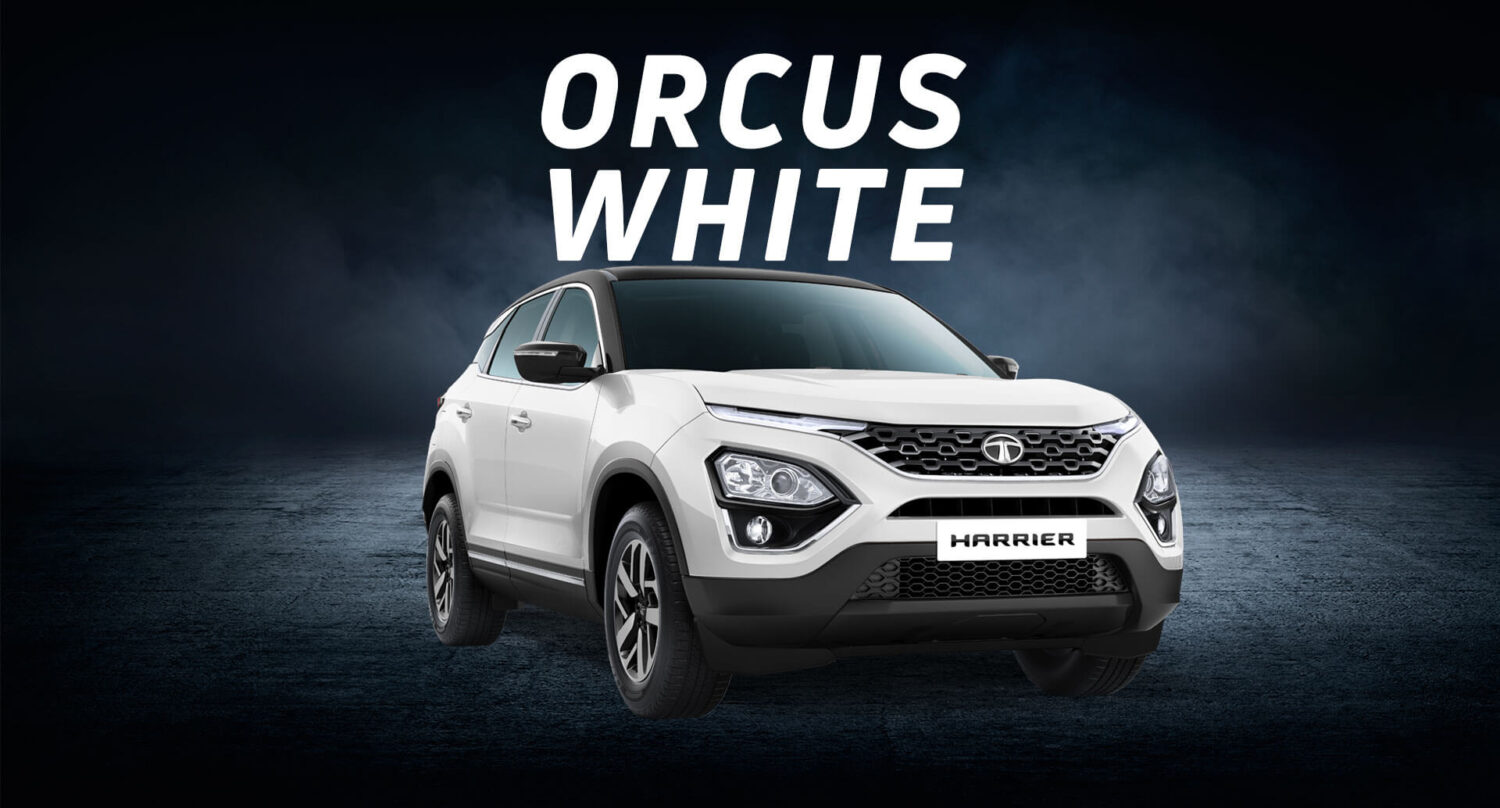 orcus white colour of tata harrier