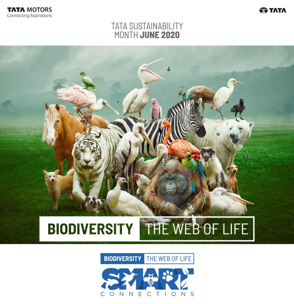 TATA MOTORS celebrates World Environment Day 2020