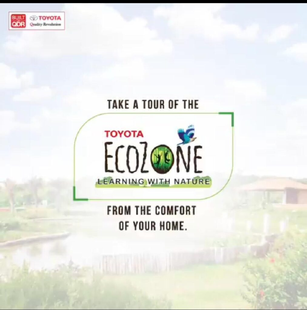 Toyota celebrates World Environment Day 2020